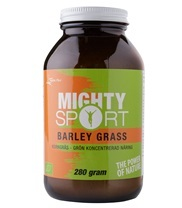 Medium mighty sport barley grass 9161 med